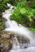 River with cascades — Stock Photo