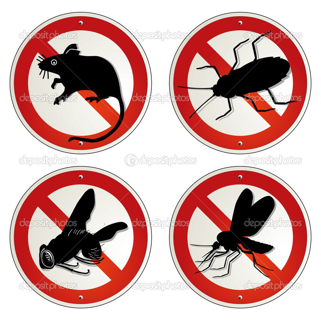 Are Bed Bugs Vermin