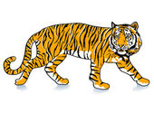 Sneak Tiger — Stock Vector