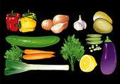 Fresh vegetables — Stock Vector