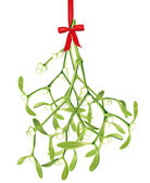Hanging mistletoe — Stock Vector