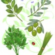 Green herbs - Stock Vector
