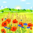 Grainfield with flowers - Stock Vector