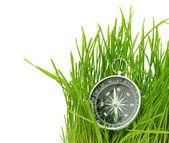 緑の草にコンパスします。 — ストック写真