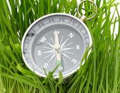 在绿草中指南针 — 图库照片