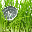 Compass in green grass — Stock Photo #4874318
