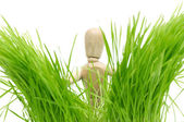 A wooden mannequin on green grass — Stock Photo