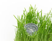 Compass in green grass — Stock Photo