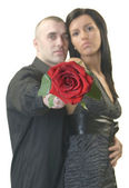 Man and woman with beautiful red rose — Stock Photo