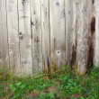 Grass and wooden fence - Stock Photo