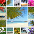 Tropical collage. Exotic travel. — Stock Photo #4284307
