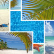 Dominican Republic Island Saona — Stock Photo