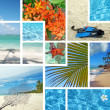 Tropical collage. Exotic travel. - Stock Photo
