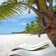 Caribbean sea Dominican Republic Island Saona - Stock Photo