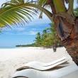 Caribbean sea Dominican Republic Island Saona — Stock Photo #4316123