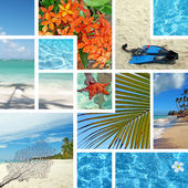 Tropical collage. Exotic travel. — Stock Photo