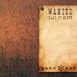 Vintage wanted poster — Stock Photo #4999600