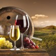 Red and white wine on vineyard - Stockfoto