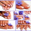 Royalty-Free Stock Photo: Collage-Hands with french manicure