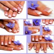 Collage-Hands with french manicure - Stock Photo