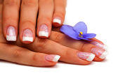 Flower,nails and woman fingers — Stock Photo