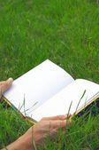 Geopende boek op het gras — Stockfoto