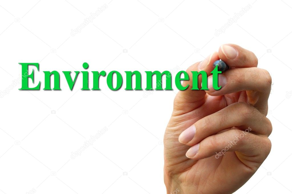 Environmental Issues Essays