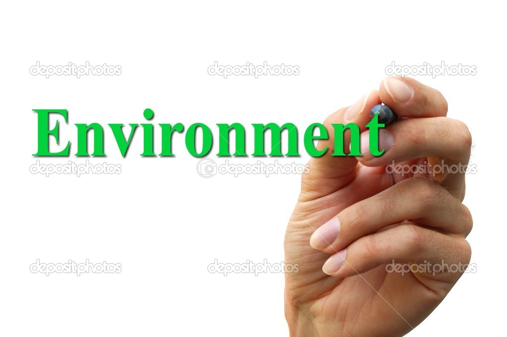 Environment Essay Writing
