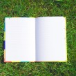 Opened book on the grass — Foto de Stock
