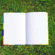 Opened book on the grass — Stok fotoğraf
