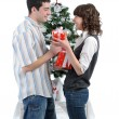 Stock Photo: Preparation for Christmas