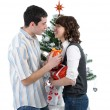 Preparation for Christmas — Stock Photo #4087260