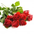 Bunch of red roses — Stock fotografie