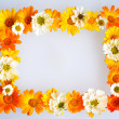 Floral frame — Stock Photo #5132958