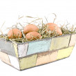 Eggs lying on hay in flowerpot - Stock Photo