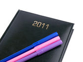 Organizer 2011 nero con penne — Foto Stock