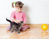 The girl irons a kitten — Stock Photo