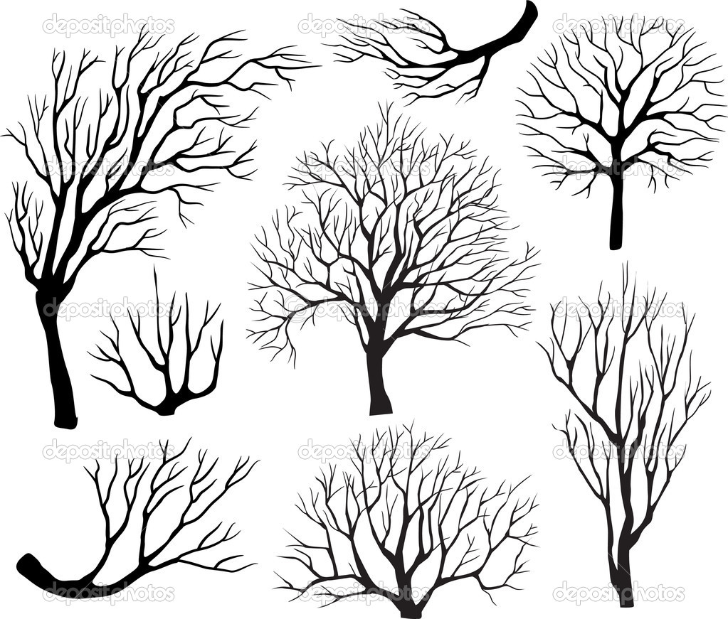 Set of silhouettes of trees   Stock Vector #4323939