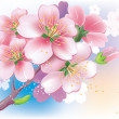 Royalty-Free Stock Vector Image: Flowers of sakura