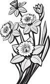 水仙の花のスケッチ — ストックベクタ