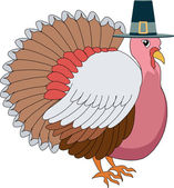 Turkey Pilgrim — Stock Vector