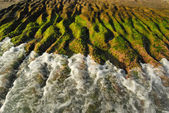 Wave finding on ridge coast covered with a green moss — Stock Photo