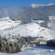 Stock Photo: Mountain settlement in winter