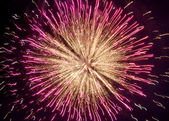 Beautiful fireworks in the night sky — Stock Photo