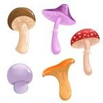 Set of cute vector mushrooms — Stock Vector