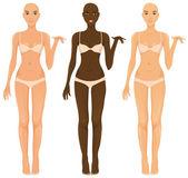 Female body — Stock Vector