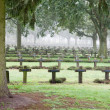 Crosses at cemetery in autumn mist - Stock Photo
