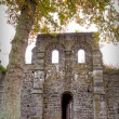 Stock Photo: Abbey ruins Villers la ville Belgium