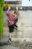 Climbing kid — Stock Photo