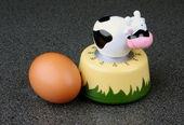 Egg timer — Stock Photo
